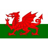 FL-010 Flag Welsh 1.5x0.9m